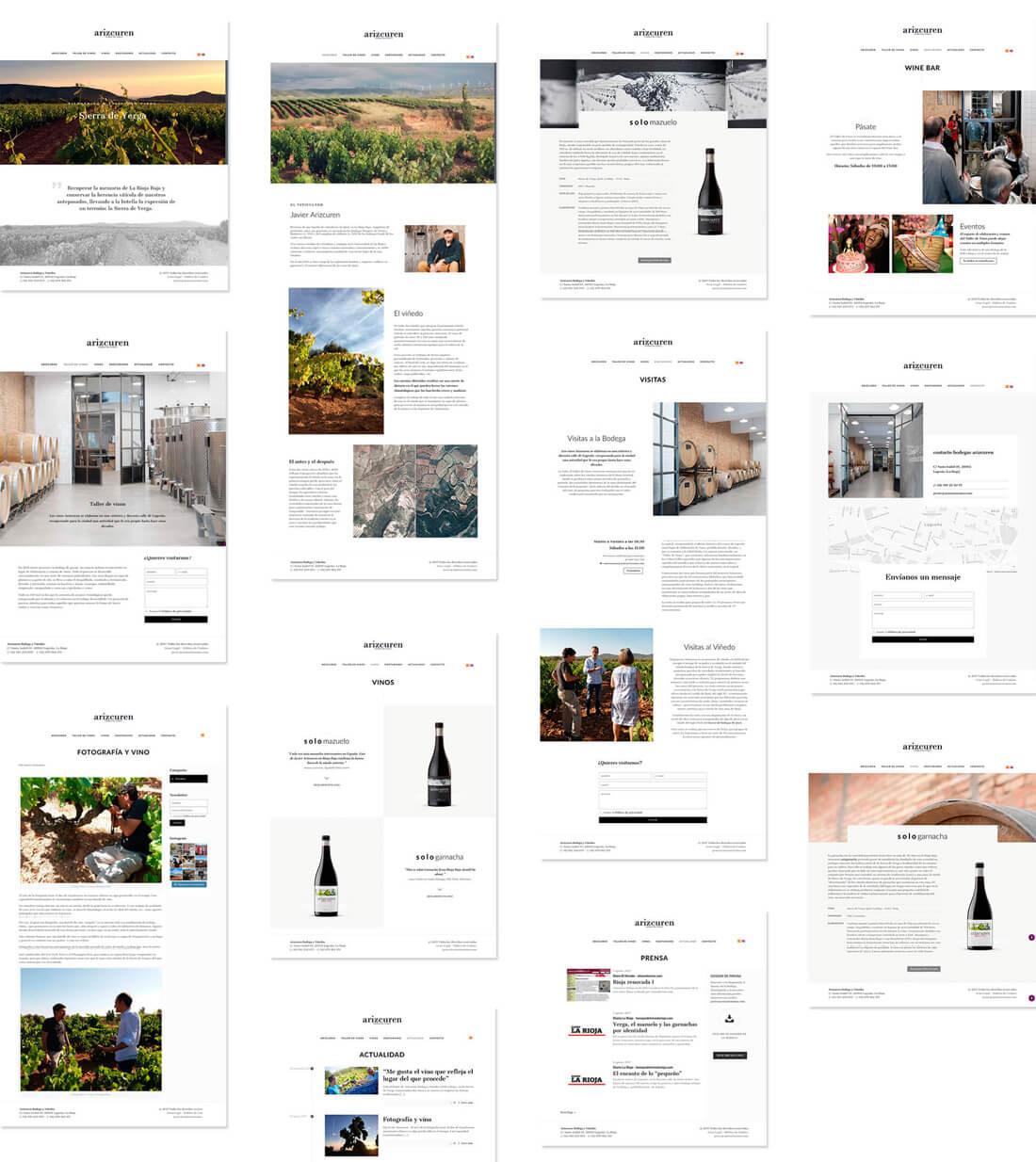 Fichas de los vinos de Arizcuren